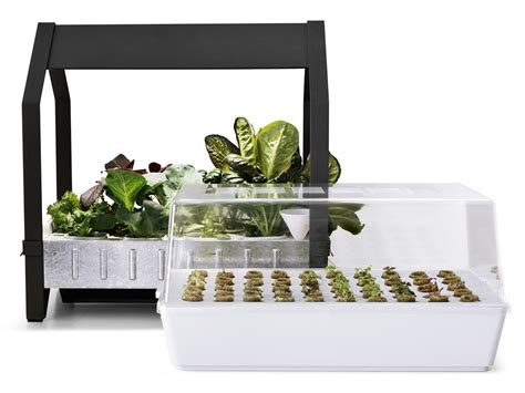 ikea hydroponics garden how much is a canabis plant worth 171 singletrack forum