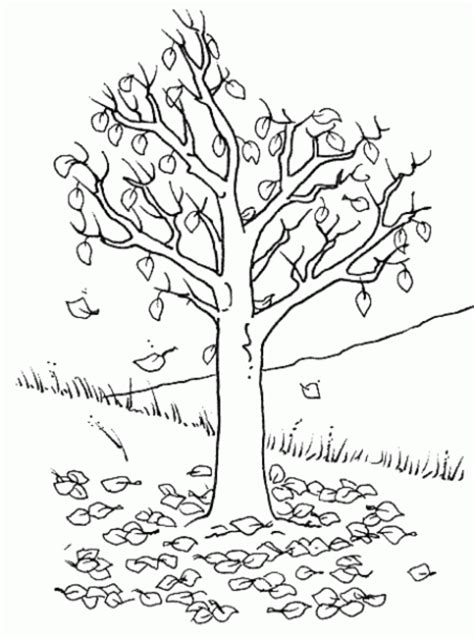 Coloring Now 187 Blog Archive 187 Tree Coloring Page O Tree Coloring Page