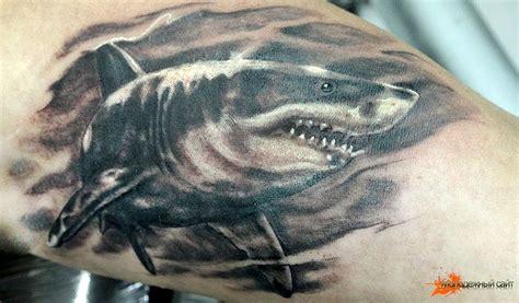 100 awesome shark tattoos rudyk ακηρατος δελφων