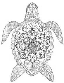 Turtle Coloring Pages For Adults free printable sea turtle coloring page it