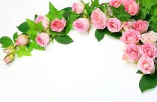 rosas para escribir banco de im 225 genes 20 postales con flores para escribir