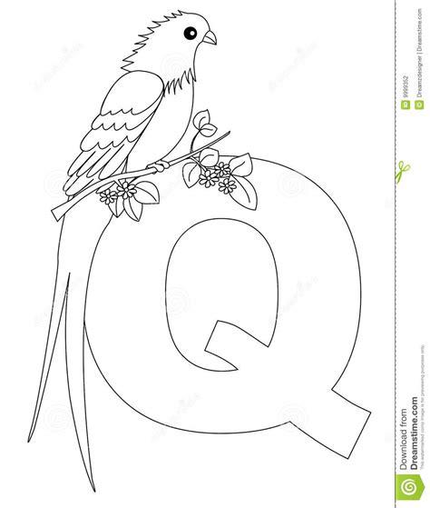 quetzal coloring page az coloring pages