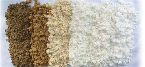 Paper From Wood Pulp - how much do you about wood pulp for paper