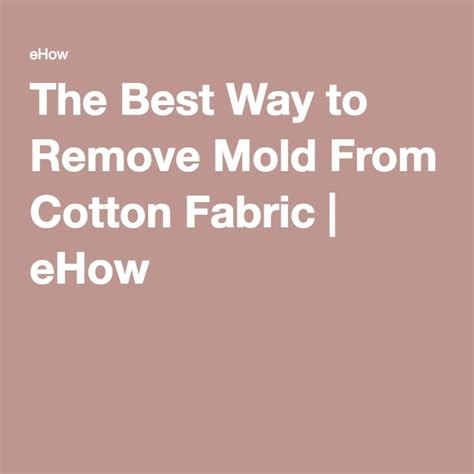 how to remove mold from upholstery the best way to remove mold from cotton fabric remove