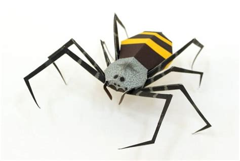 Spider Papercraft - animal paper model banana spider free template