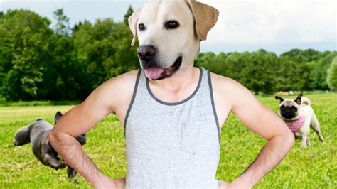 un dogs si yo fuera un perro what juegagerman
