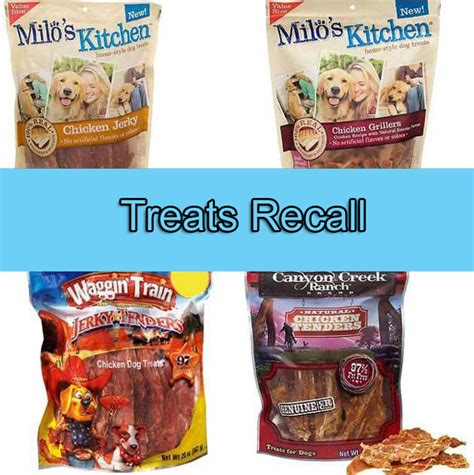 treat recall the politics of recalling allegedly poisonous pet food