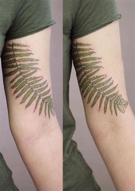 cindy vanschie fern tattoo watercolor tattoo pinterest
