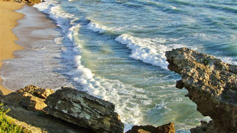 imagenes relajantes del mar mar playa y gaviotas para relax youtube