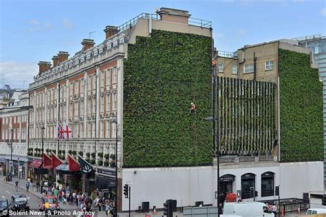 living roofs and walls climbing up the walls country s largest vertical garden