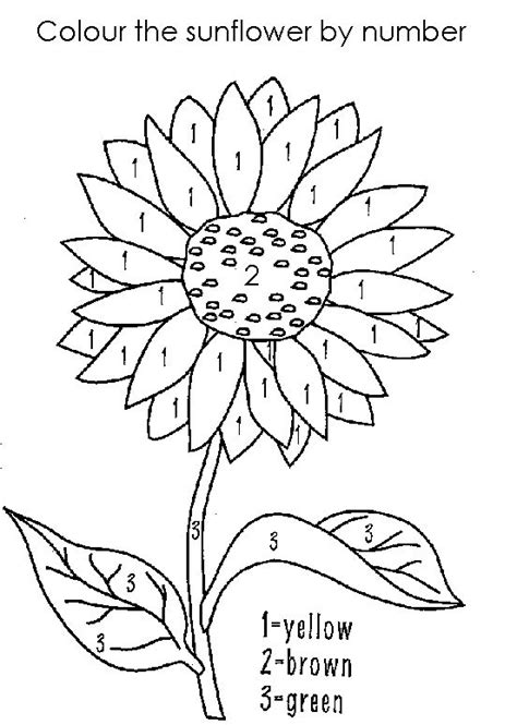 coloring page gogh sunflowers printable paint by numbers for projects to try