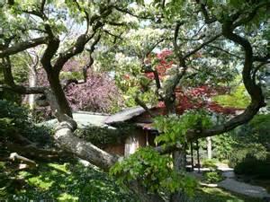printemps au jardin albert kahn jardins du japon et d