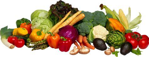 Vegetable L by L 233 Gumes Vegetables