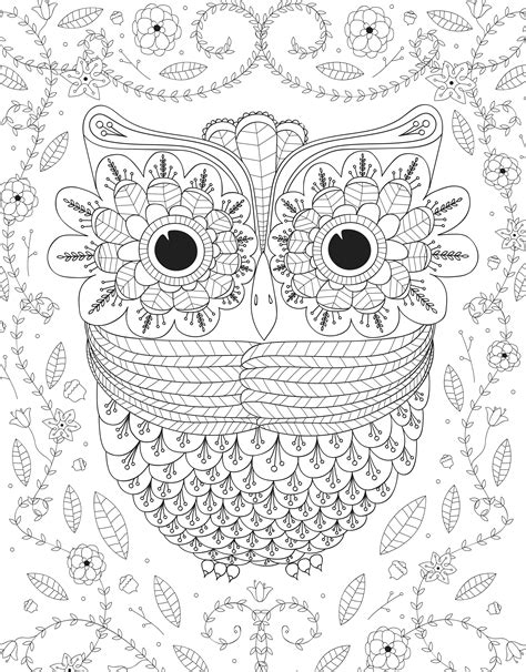 free owl coloring pages latest owl coloring picture baby