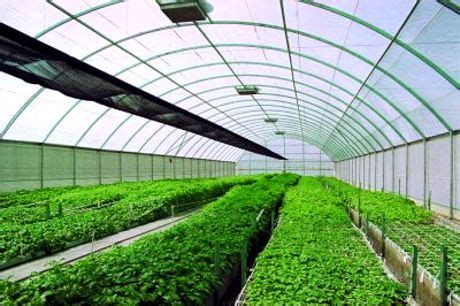 in house technology agriculture and technology