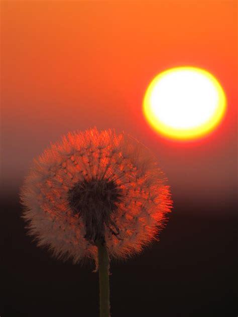 wann ist sonnenuntergang in deutschland sonnenuntergang bei d 246 teberg seelze myheimat de