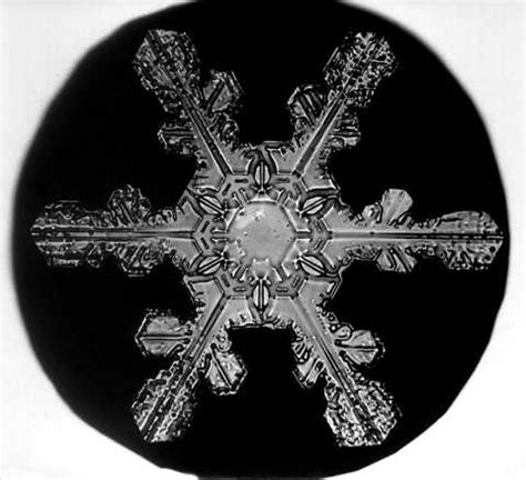 snowflake bentley camera mel s blog artist research wilson bentley
