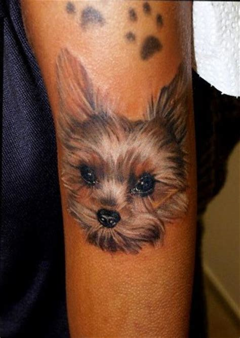 yorkie tattoo pictures 91 best images about dog tatoo on pinterest cartoon dog