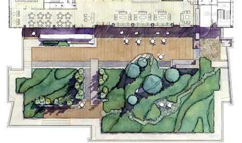 rooftop landscaping designing our future sustainable landscapes