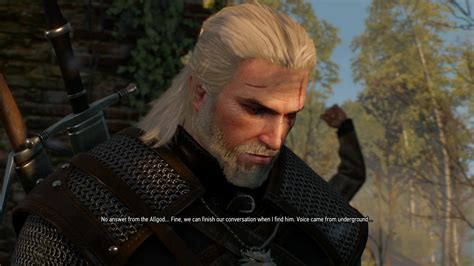 witcher 2 hairstyles favorite hair style cd projekt red forums