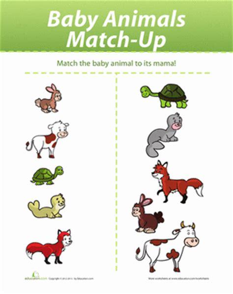 new year animals matches baby animal match up