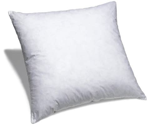 Best Place To Buy Pillow Inserts by Etc Duck Feather Square Pillow Insert 36 X 36