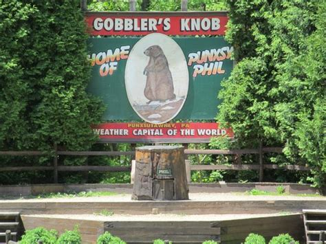 Where Is Gobblers Knob Located by At Phil S Stump Picture Of Gobbler S Knob Punxsutawney