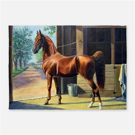 Outdoor Rugs For Horses Rugs Area Rugs Indoor Outdoor Rugs