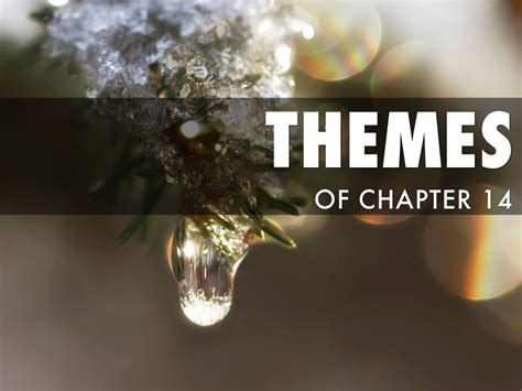 scarlet letter chapter 14 themes the scarlet letter chapter 14 by dylan cbell