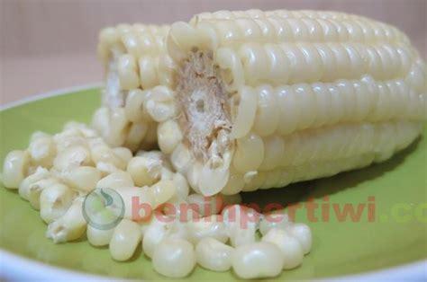 Benih Jagung Ketan sup jagung pulut binte biluhuta khas sulawesi benih pertiwi