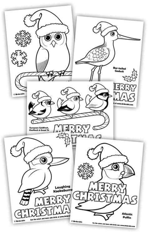 coloring pages for christmas in australia christmas coloring fun in coloring pages holidays