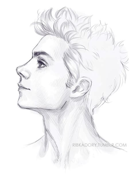 Slender Neck Tomato Hair Arched Eyebrows Full Lips Sharp Jaw Haughty Eyes Character Drawing For Boys