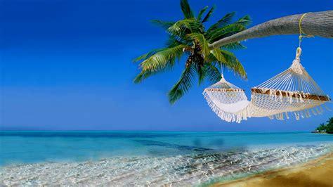 tropical beach  ocean hawaii coast   ultra