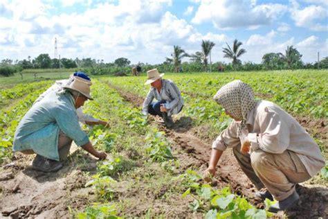 imagenes mujeres rurales 15 de octubre d 237 a internacional de la mujer rural