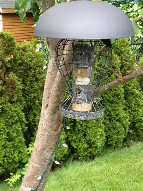 my mother s squirrel proof bird feeder funny flamingo
