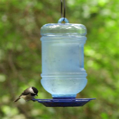 water cooler for birds with a roof pet water cooler bird waterer new free shipping ebay