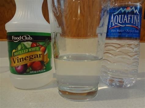 vinegar in s water ear cleaner learn how to make your own