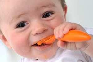 primeros alimentos de una dieta vegetariana  bebes