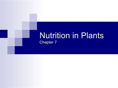 section 22 1 introduction to plants top 28 plants chapter ppt plant reproduction chapter