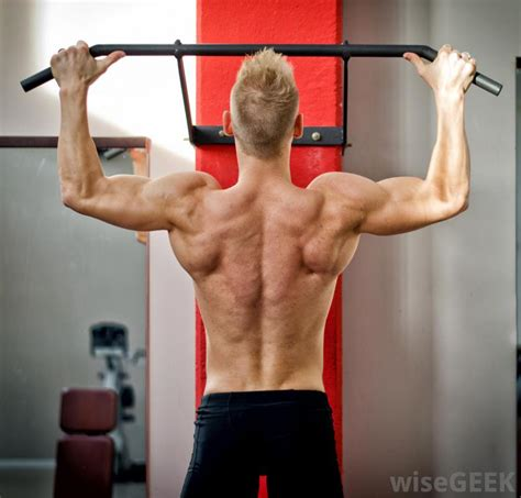 core muscles  pictures