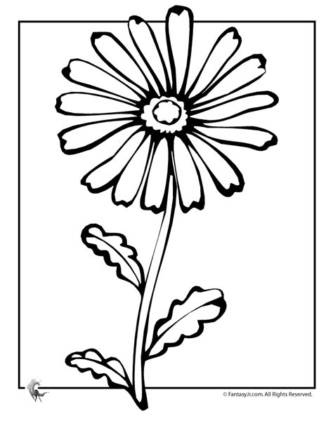 daisy coloring picture for kid