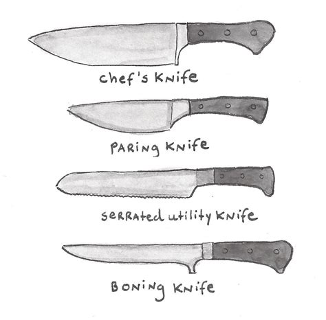kitchen knives names the 4 main kitchen knives