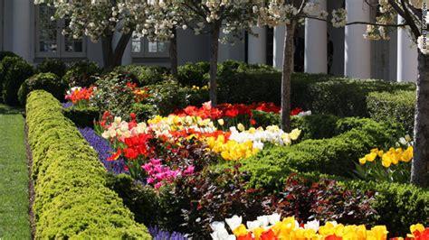 white house rose garden alt left demand weeds be planted in white house rose garden very ersatz news