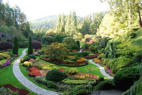 arbusti ornamentali da giardino progettazione arredamento giardini verde fontana s a s
