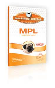 Detox Recovery Powder Dr Jeff Vet Recommended For Liver by Mpl Archives Topdoghealth