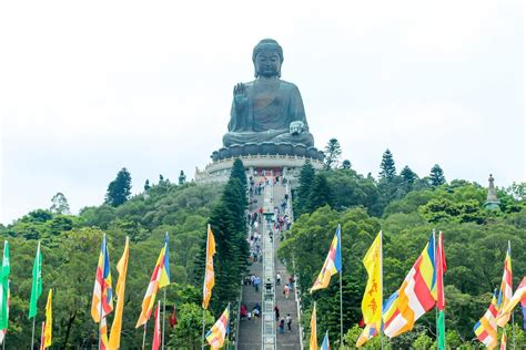 guide  visiting hong kongs big buddha la jolla mom
