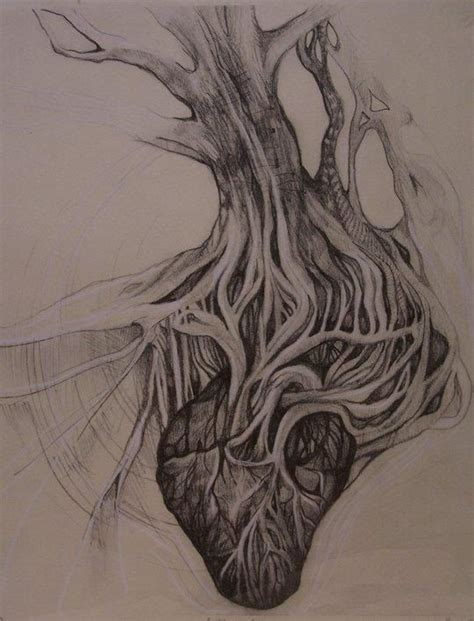 root art design zoetermeer roots of a tree connecting to an anatomical heart