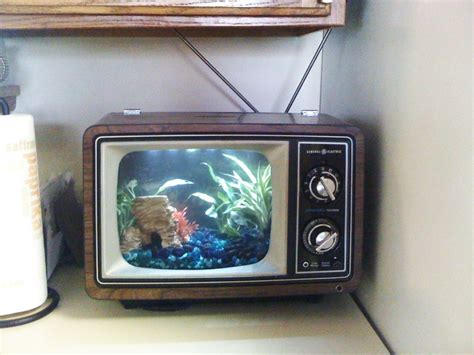 Tv Aquarium table top version of the fish tank tv aquarium tank jantzie the tv aquarium