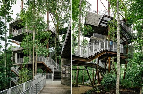 eco homes sustainable tree houses home and gardening mithun erects the sustainability tree house in the dense