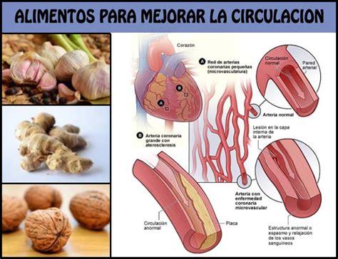 alimentos  mejorar la circulacion  debemos incluir en nuestra dieta